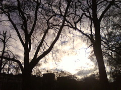 Cracks (Jessica Gosling (제시카)) Tags: lighting uk morning england sky sun london clouds photography jessica random soas gosling jessicagoslingphotography