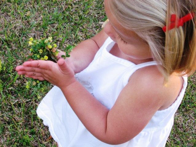 pesflowers