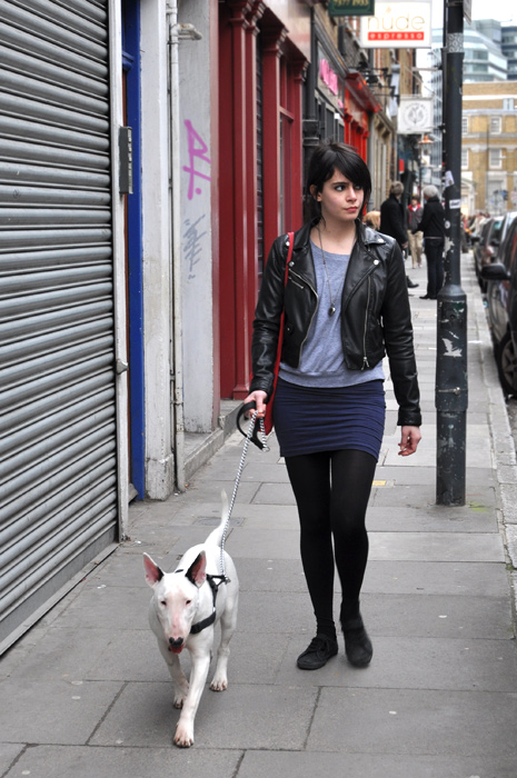 london, fashion, street style, punk, bull terrier