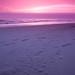 Passaggio nella sabbia