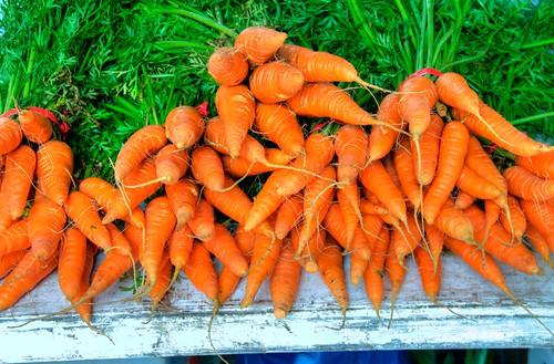 2016 Smyrna Fresh Produce Market