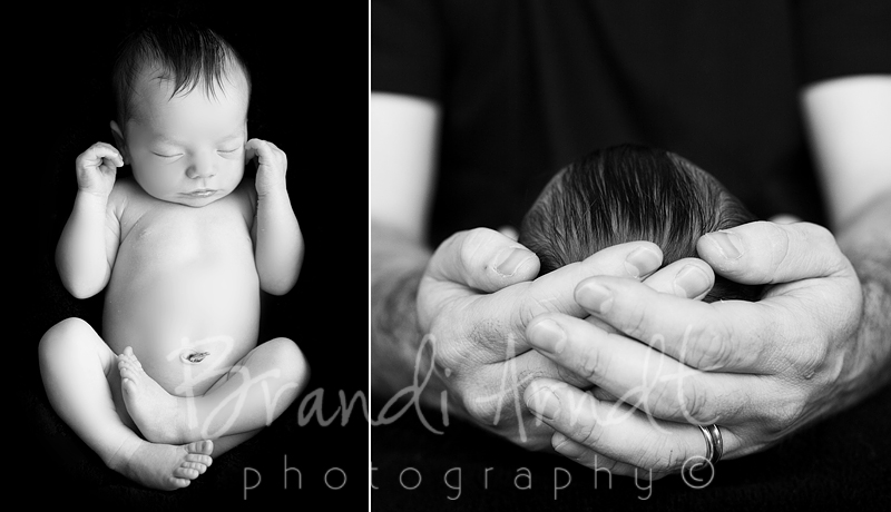 5©Brandi Arndt edmonton newborn photographer do not copy