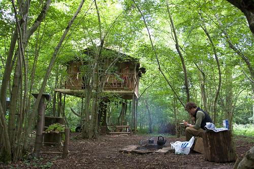 Treehouse Life