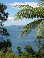 View from our bach in Tuateawa, Coromandel, New Zealand (nz-swiss) Tags: new bach zealand coromandel huser tuateawa