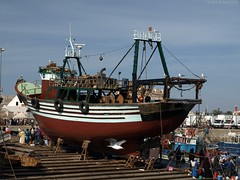 Fishing boat @ Essaouira /  (Rick & Bart) Tags: haven boot boat seagull morocco maroc fishingboat essaouira vissershaven marokko mogador smrgsbord vissersboot  kartpostal botg rickbart thebestofday gnneniyisi  trshot fishermenport rickvink