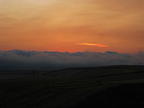 Campo de amanecer