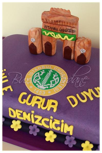 Istanbul University Cake