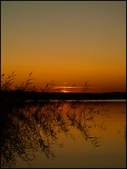 Tonight (Kirsten M Lentoft) Tags: sunset lake reflection water denmark silhouettes værløse søndersø worldbest notacanon wonderwold kirstenmlentoft