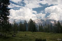 Route 434 (HdB1973) Tags: italien italy mountains zeiss italia sony carl bergen dolomites dolomiti a100 itali dolomiten cortinadampezzo dolomieten sal1680z variosonnar16803545za minoltaamount variosonnartdt35451680 variosonnartdt3545180
