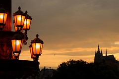 Sadden (mischuge) Tags: city sunset tree bird lamp silhouette lights prague praha praguecastle rudolfinum romanticprague staromstsk august09