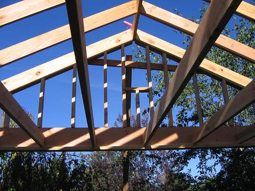 Back Porch framed in