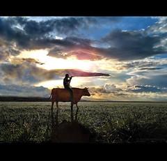 Riding the Cow  - V (h.koppdelaney) Tags: life light art digital photoshop self cow energy symbol path buddhism philosophy ox story zen mind imagination meditation wisdom quest awareness consciousness symbolism psychology prana archetype libido hourofthesoul graphicmaster