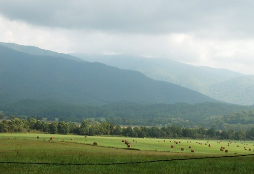 Landscape of Cades Cove