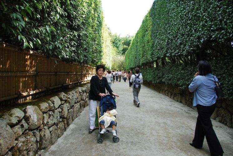 京都-0391