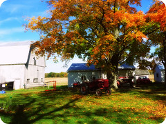 fall on the farm (PepOmint) Tags: autumn red orange brown green fall barn season october michigan gorgeous fallfoliage naturesbest farmall autumnalequinox amazingcolor fallonthefarm