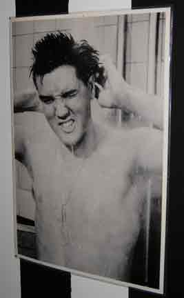 Shower Curtains Movies Symbol Beach House In The Burbs Happy Birthday Elvis