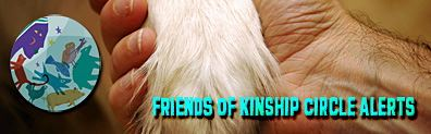 Kinship Circle - Friends of KC Banner