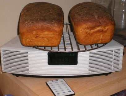 Ginzu Wave Radio Bread Rack