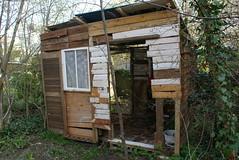 (Kate Louisanna) Tags: wood trees house garden entropy cabin hut shack
