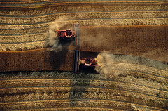 Wheat Harvest, Great Plains (JC Richardson) Tags: usa field farm wheat farming harvest precision nationalgeographic alignment greatplains combines jimrichardson