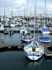 ireland marina boat bangor northern