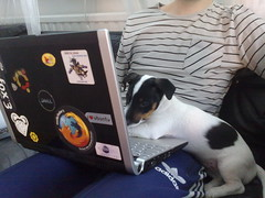 Theo helping out with some coding