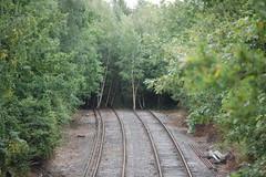 Tracks to nowhere!, Chessington South (stavioni) Tags: trees train track south railway surrey line disused chessington