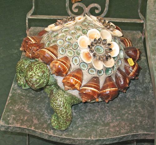 se shell turtle