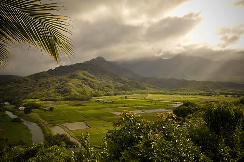Kauai09-4306.jpg