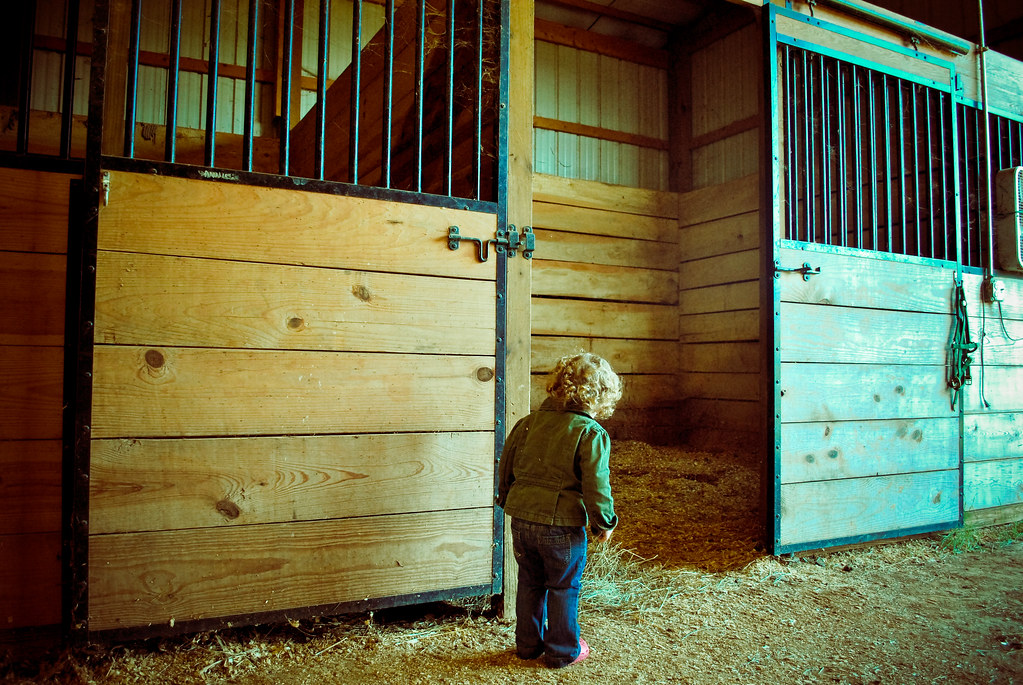 PATs Farm Visit16
