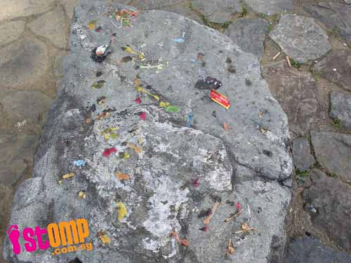 Mooncake Festival revellers leave big mess at Little Guilin
