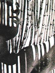 Mario Soldati, La confessione, Mondadori (Oscar Narrativa 1991) 2009; Art Director: Giacomo Callo, Graphic Designer: Susanna Tosatti; alla copertina: © Herbert List / Magnum / Contrasto (part.), 5