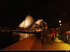 Opera House at night (Dianlin) Tags: park city sea summer birds night cathedral sydney jazz australia olympus bookstore hydepark operahouse qvb domain stmaryscathedral sydneyfestival