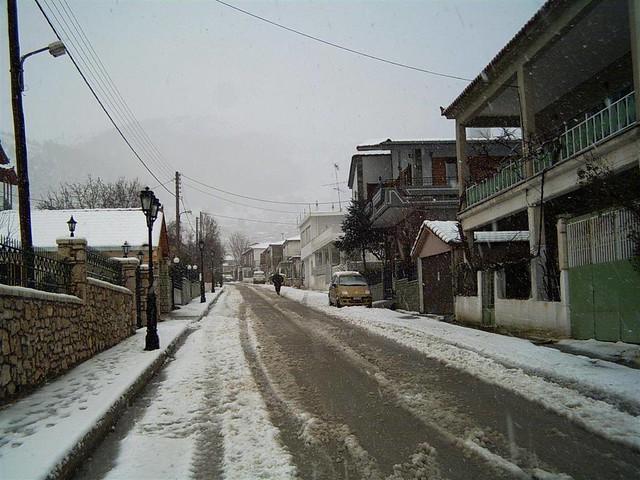 Πελοπόννησος - Αρκαδία - Δήμος Μαντινείας ΝΕΣΤΑΝΗ - Ιαν. 2005