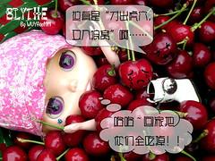 樱桃的命运14