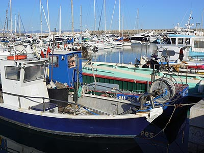 bateaux de pêche.jpg