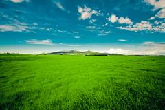 waimea (SARA LEE) Tags: morning snow green field clouds hawaii early horizon sunny waimea bigisland distance maunakea kamuela grassy fosho manaroad sarahlee legothenego kohalamountains vivantvie