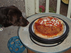 3358753346 e342c12bfa m Mr Dutch Oven Pizza Ring and Stand product review.