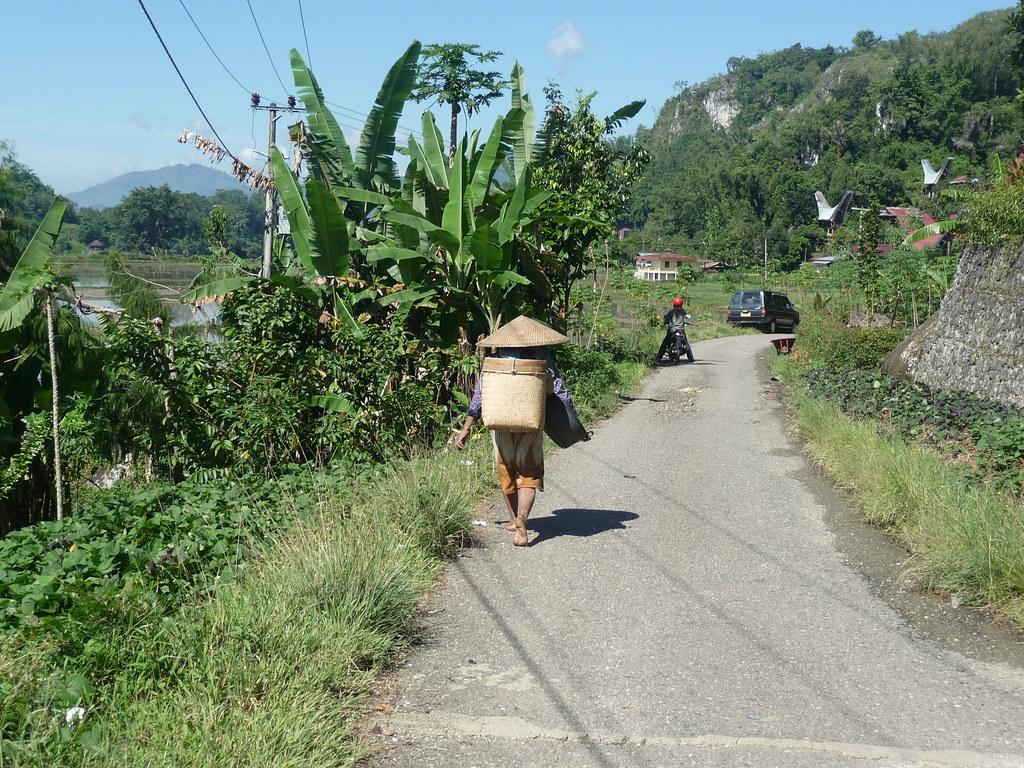 Pays Toraja Visite 3 (13)