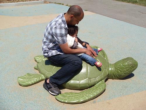 Turtle on Koret Children's Playground in San Francisco