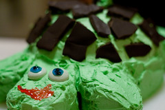 Turtle Cake (Damien Ayers) Tags: birthday party green cake turtle chocolate celebration