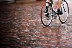 Meijer Grand Cycling Classic (docksidepress) Tags: summer reflection wet rain bicycle michigan august tires cobblestone cyclingrace grandrapids bikerace 2009 d40 hitthebricks 105mmf28gvrmicro cyclingcriterium meijergrandcyclingclassic