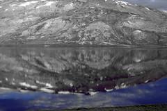 reflection, sheosar lake (TARIQ HAMEED SULEMANI) Tags: tourism trekking jeep hiking laila soe tariq jeepsafari deosai sheosarlake concordians sulemani barapanibridge