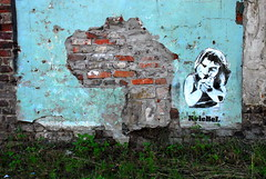 street art Ghent - KrieBeL (_Kriebel_) Tags: street urban sun bird art de one graffiti pier arte jean mr belgium belgique desk mark belgië pedro crew jam 95 spa belgica ghent gent mata resto minus gand nosotros sela urbain leem dyno joc roa 319 kriebel ozon jonaz jasta spezial malinas sesa vzw tumult jesserobot jeugddienst hartos blaisantvest streetartbelgium nephtali alosta belgiën hertkore kriebelized jeanspez leenknecht roabot praybacktime ijzendijkstraat uinxx
