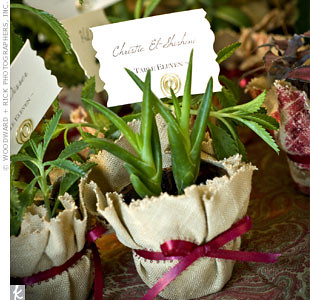 Organic Wedding Favor