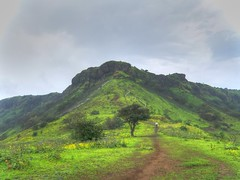 Raireshwar (Prashhant) Tags: mountain tree green nature clouds hill wai pune satara raireshwar bhor kenjalgad