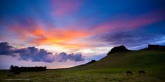 Kohala Ranch Sunset (Rex Maximilian) Tags: sunset horse cloud grass hawaii hill pasture bigisland puu highaltitude bigisle highelevation highroadtohawi