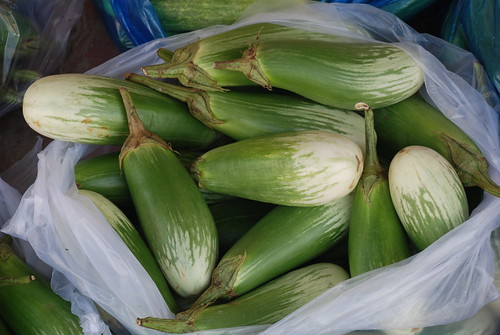 Vinh Long - Eggplants