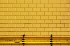 field music:tones of town (visualpanic) Tags: espaa abstract travelling colors lines yellow wall architecture pared arquitectura bricks minimal viajando amarillo abstracto gijon 2009 paret agost groc lineas espanya abstracte viatjant linies
