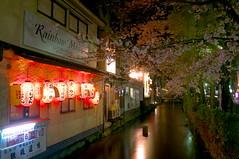 Cherry blossom on Kiyamachi #1 (Luki Ki Fom) Tags: japan night 35mm cherry canal lowlight kyoto nightshot finepix lanterns cherryblossom sakura fujifilm lantern pontocho kiyamachi x100 23mm apsc fujix100 35mmequivalen
